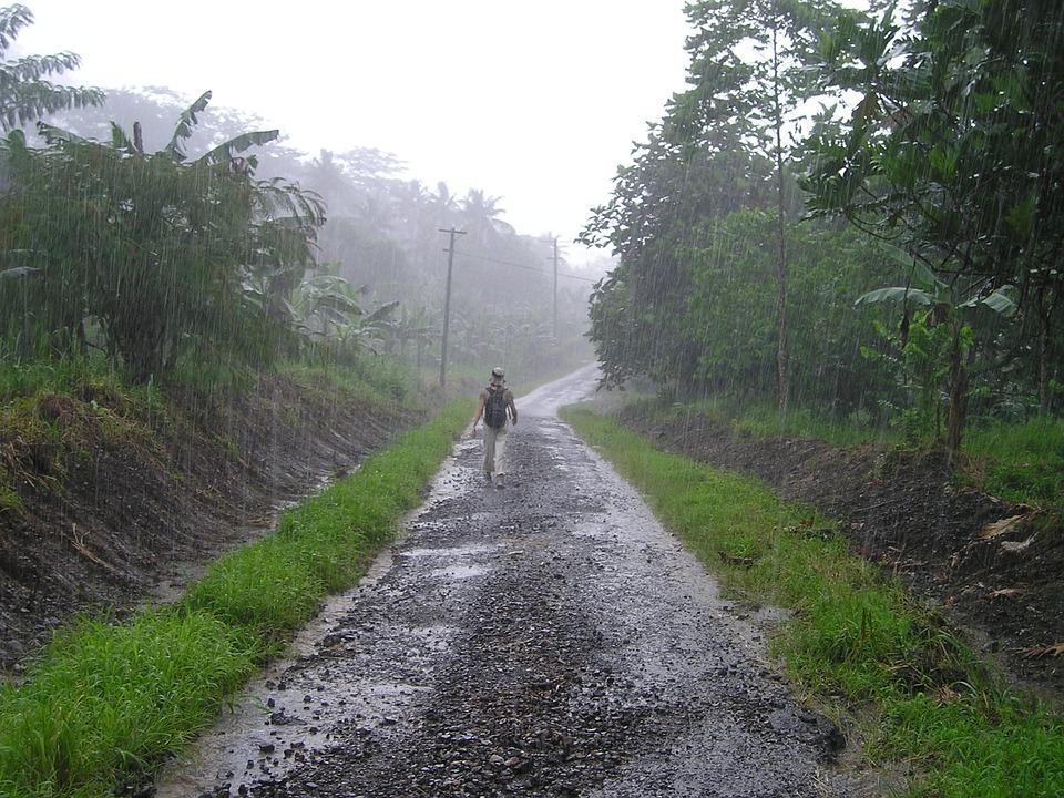 downpour rainy season samoa  u00b7 free photo on pixabay