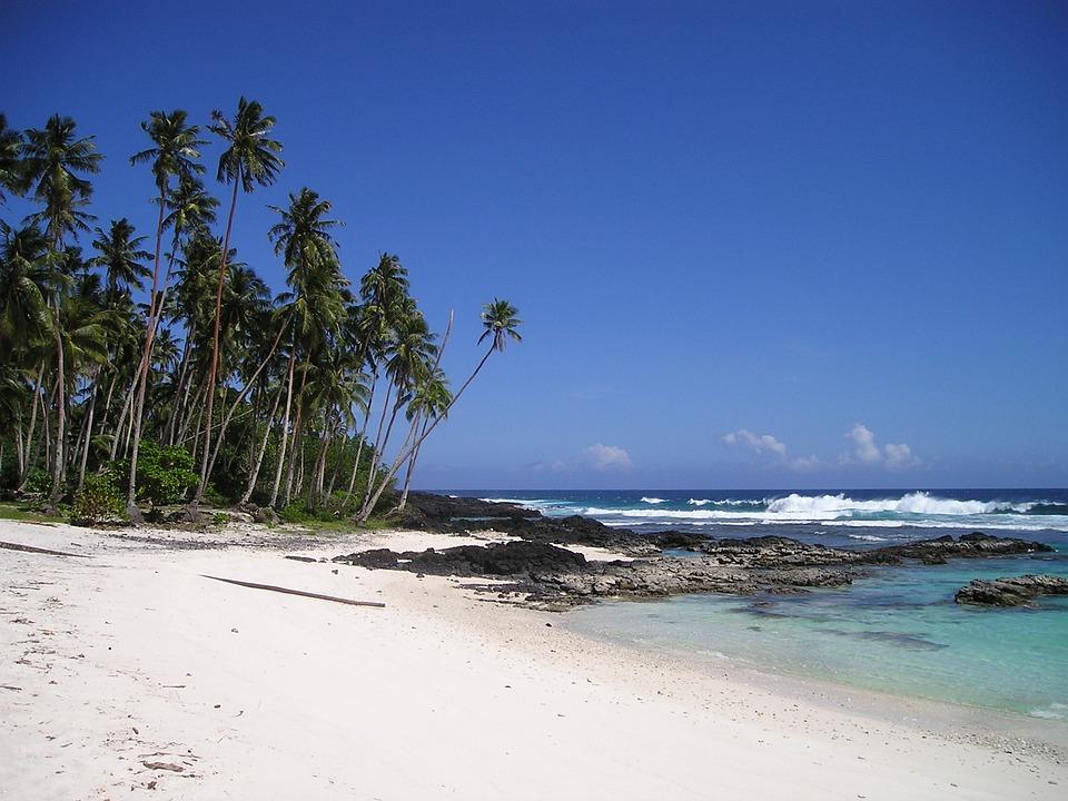 Palm Trees Beach Beautiful Sand Samoa