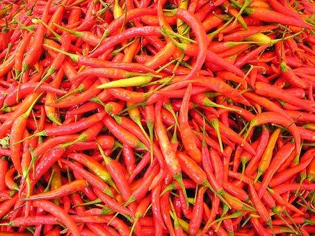 Chilli Pepper, Sharp, Spices, Laos