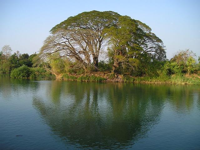 photo gratuite laos arbre l 39 eau r flexion image gratuite sur pixabay 447. Black Bedroom Furniture Sets. Home Design Ideas