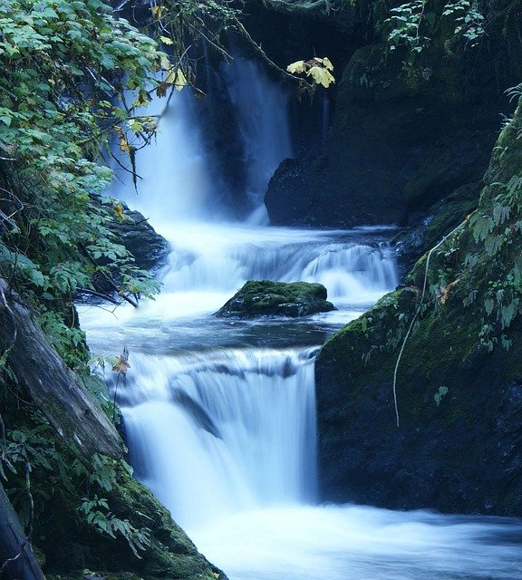 free photo  water  waterfall  stream  fall
