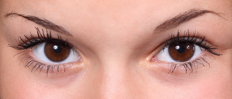 Feathered Permanent Eyebrow Technique
