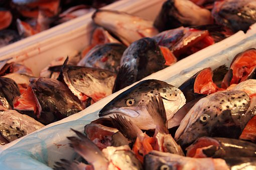 לקראת החג: כללי זהירות לקניה וטיפול בדגים גולמיים למאכל