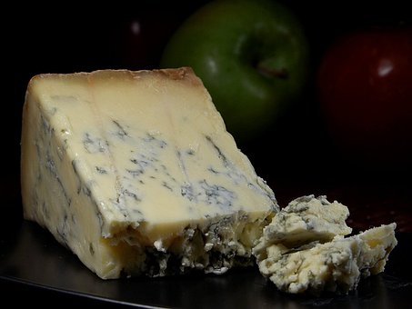 Stilton Blue Cheese, Blue Mold, Mold