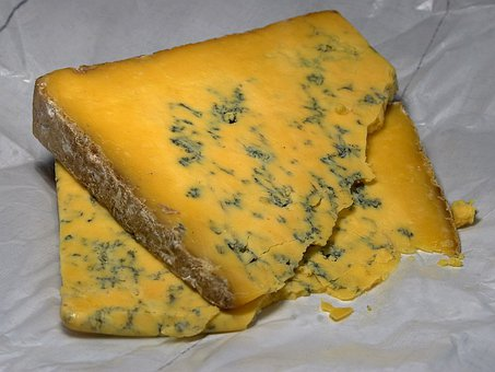 Shropshire Blue Cheese, Blue Mold, Mold