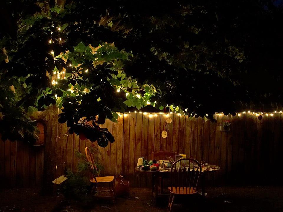 Free Photo Garden Evening Summer Evening Free Image