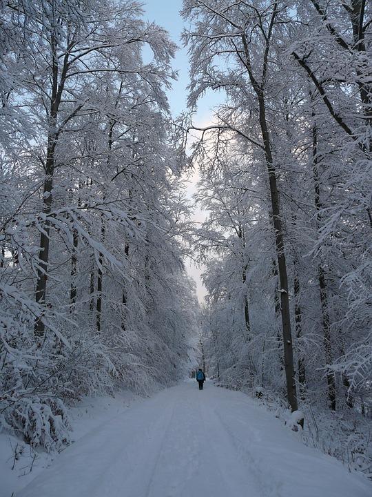 Bilderesultat for tur vinter