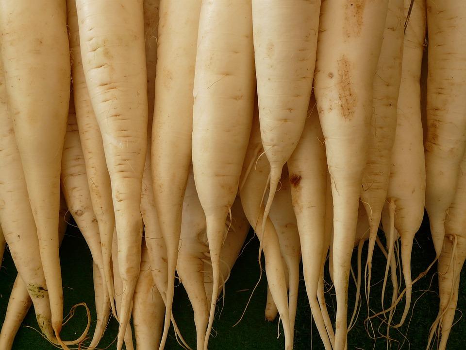 大根, 野菜, 食品, 白, ビタミン, 健康, 食べる