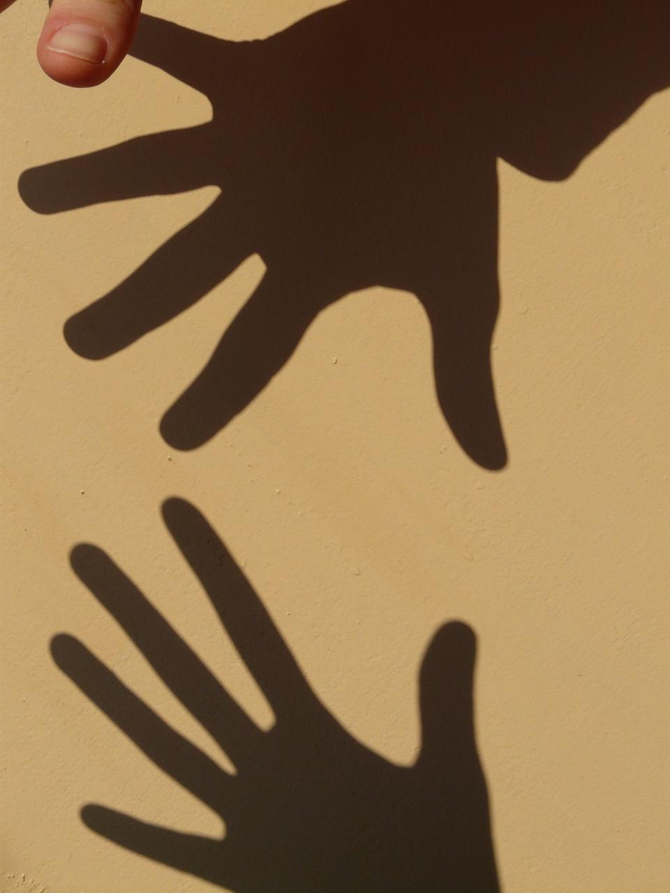 фото животных руками тени муниципальное образование