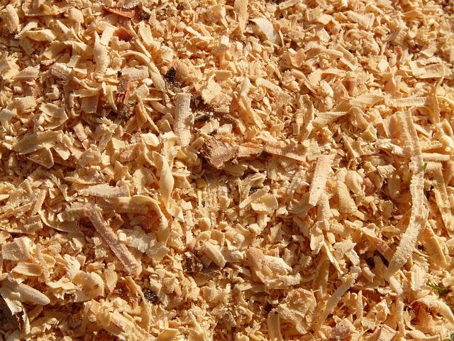 Sawdust Saw Wood 183 Free Photo On Pixabay