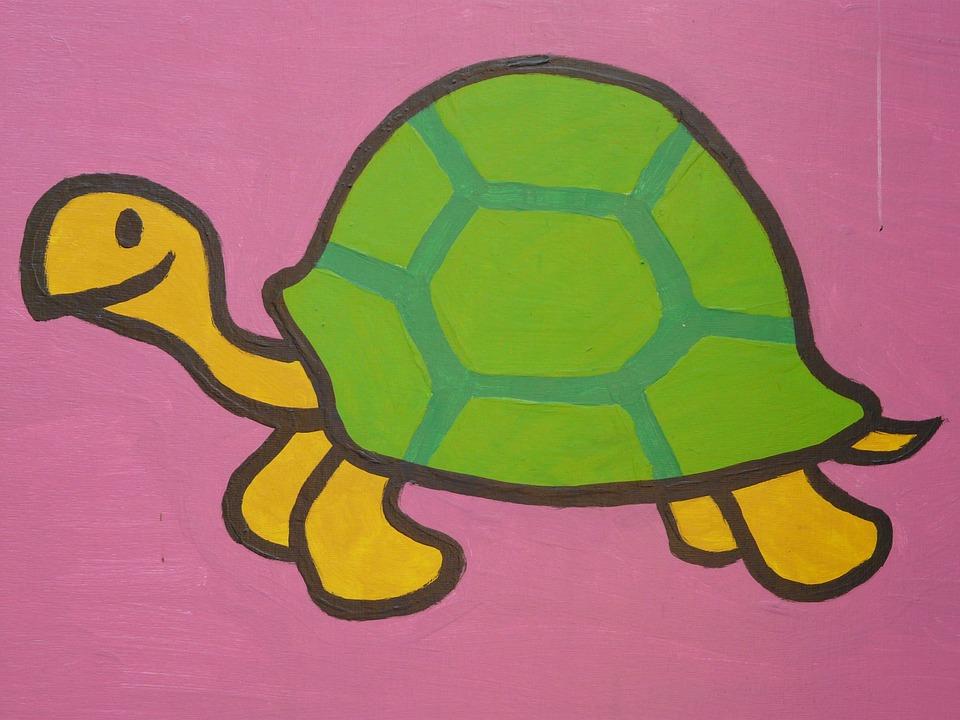 Kaplumbağa çizgi Film Karakteri Pixabayde ücretsiz Fotoğraf