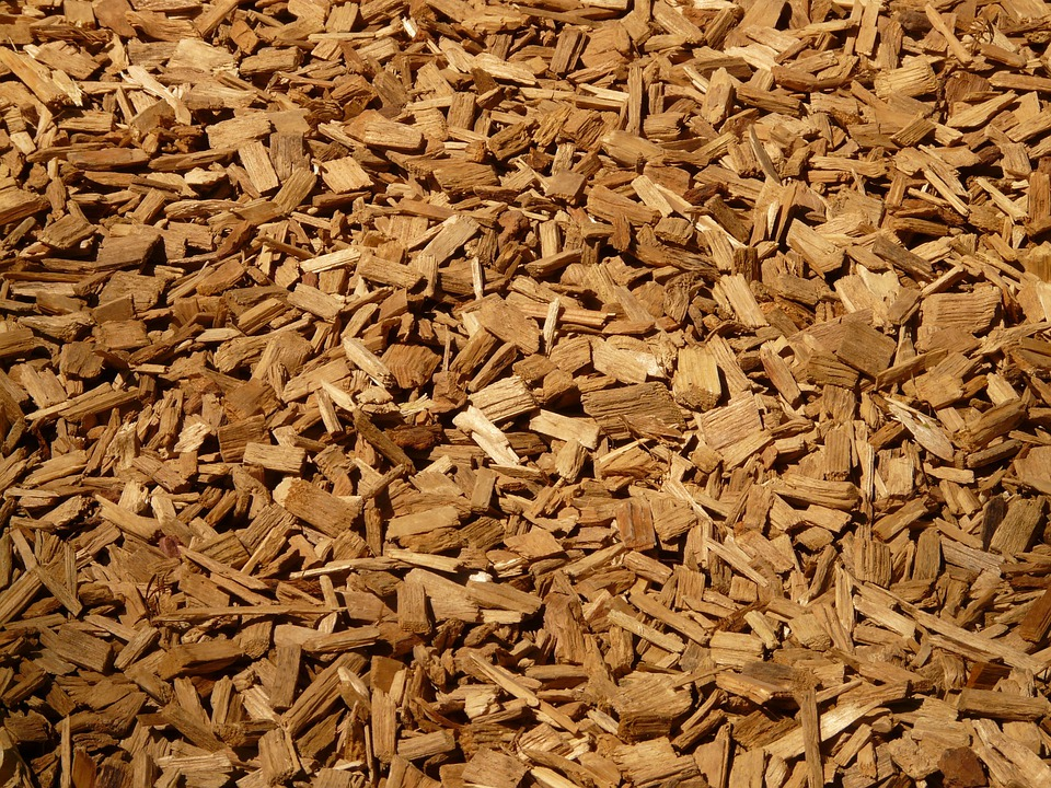 Schreddergut Schredder Holz - Kostenloses Foto auf Pixabay