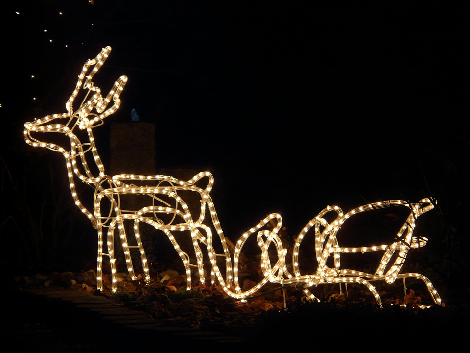 kostenloses foto lichterkette weihnachten rentier kostenloses bild auf pixabay 11441. Black Bedroom Furniture Sets. Home Design Ideas
