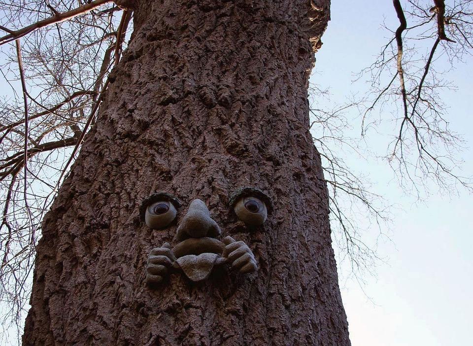 dekoration baum schmuck zweig gesicht - Dekoration Baum