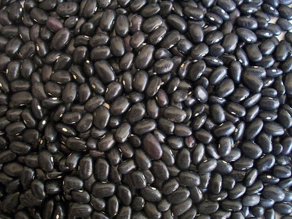 Black Beans, legumes, vegetarian food