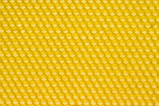 Beeswax Honey Honeybee Honeycomb