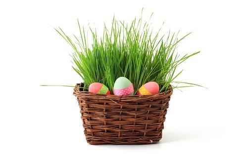 Basket Celebration Decoration Easter Egg E