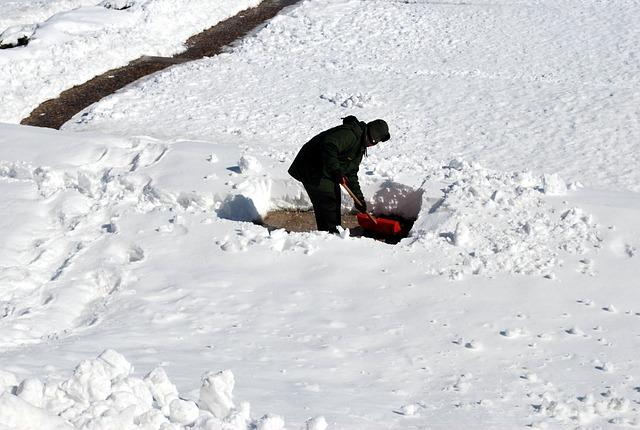 Free Photo Shoveling Man Snow Work Male Free Image
