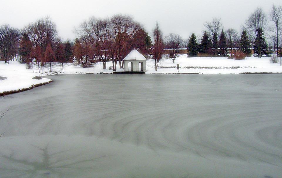 Gratis foto: Bevroren, Vijver, Park, Ijs, Winter - Gratis ...