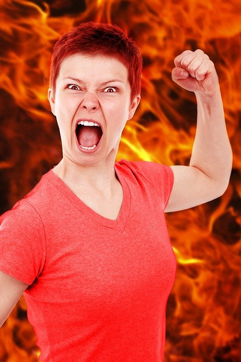 Free Photo Anger Angry Bad Burn Dangerous Free