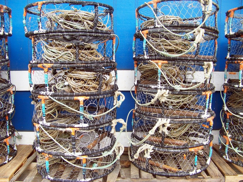 Free photo newport oregon crab pots harbor free for Crab fishing oregon