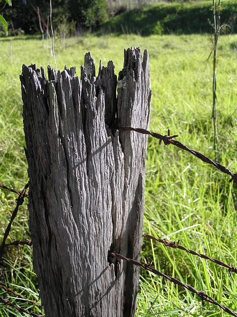 Free photo fence post wood farm old wire