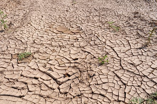 Drought Cracked Earth Dry Earth Parched La