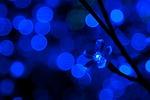 background, blue, bulb