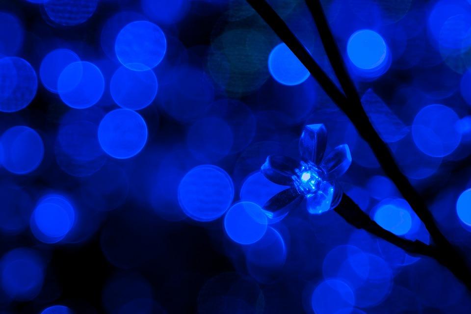 Sfondo Blu Lampadina Foto Gratis Su Pixabay