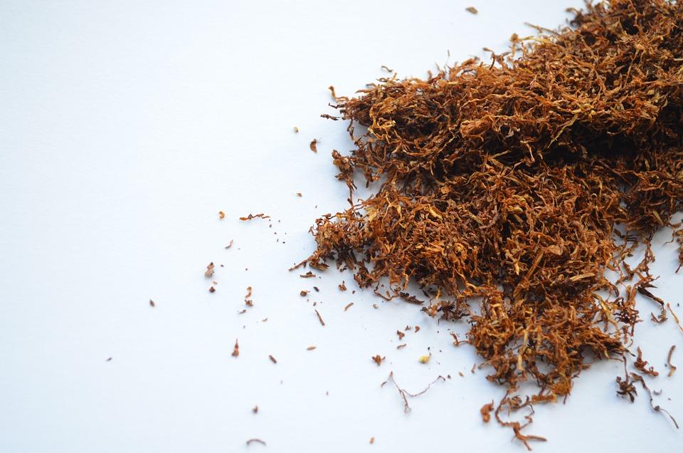 kostenloses foto tabak raucher zigarette nikotin kostenloses bild auf pixabay 19997. Black Bedroom Furniture Sets. Home Design Ideas