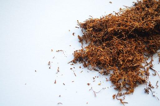 Tobacco Smoker Cigarette Nicotine Addictio