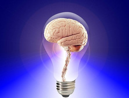 Brain Think Human Idea Intelligence Mind C