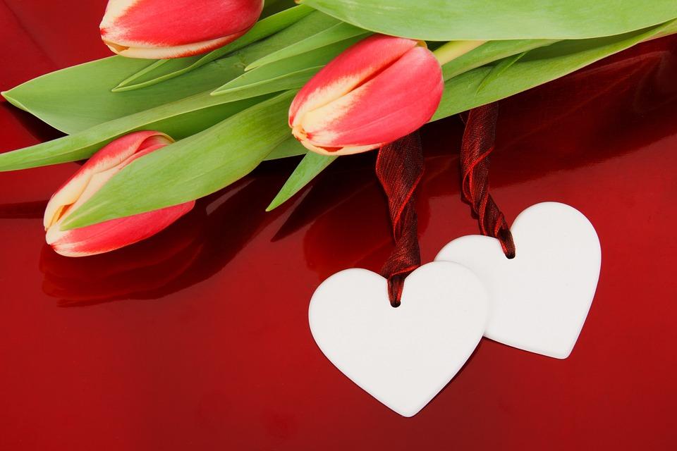 Anniversario Matrimonio Sfondi.Anniversario Sfondo Fiore Foto Gratis Su Pixabay