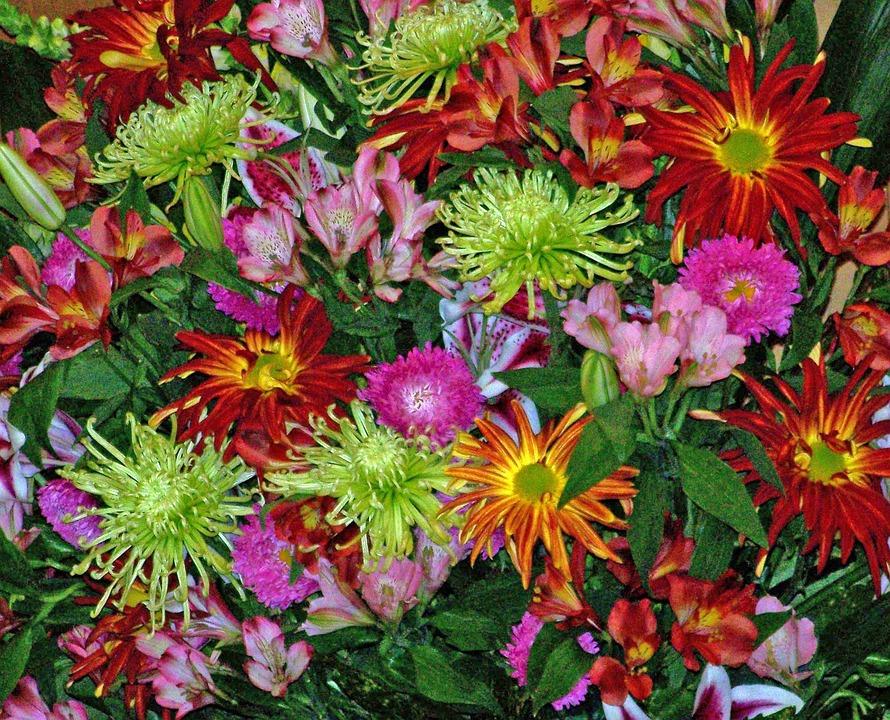 Blumen Hochzeit Blute Kostenloses Foto Auf Pixabay