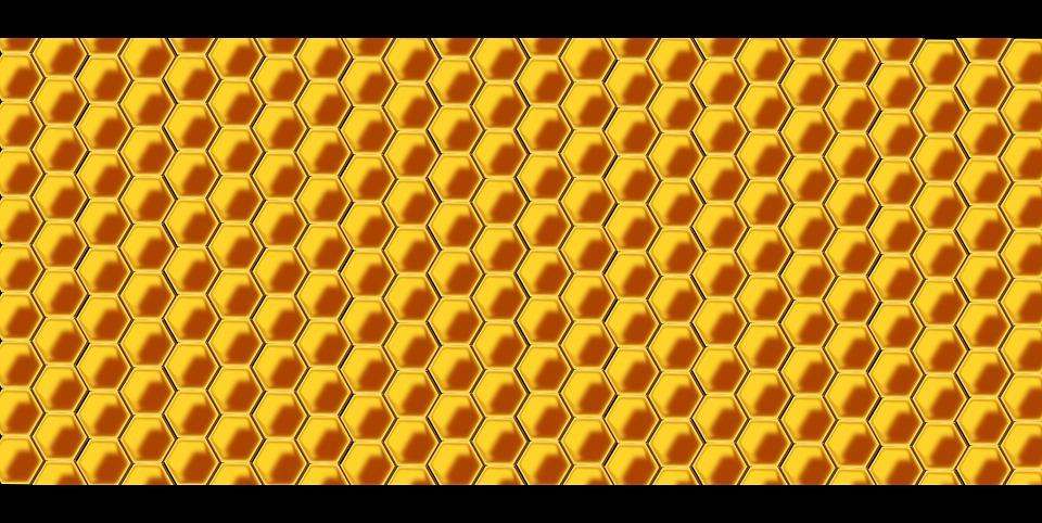 960 x 482 jpeg 172kBAbeja