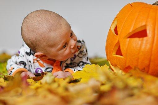 Adorable, Autumn, Baby, Boy, Child