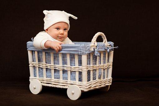 Adorable, Baby, Basket, Beautiful, Boy