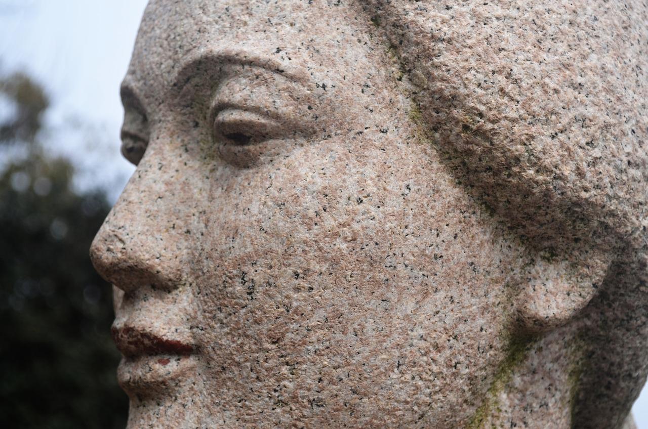 разновидностях специфике каменное лицо фото мвд для высшего