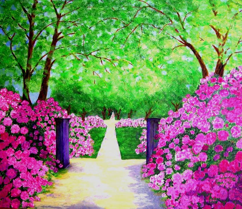 rhododendron parc arbres plantes image gratuite sur pixabay