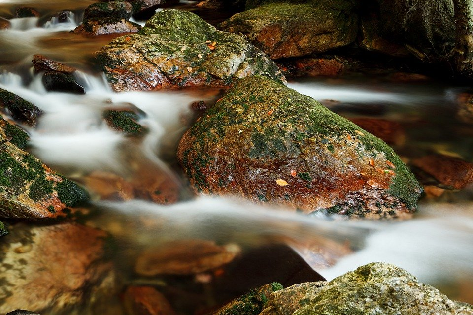 Пятно, Размытым, Каскад, Осень, Поток, Текущий, Леса