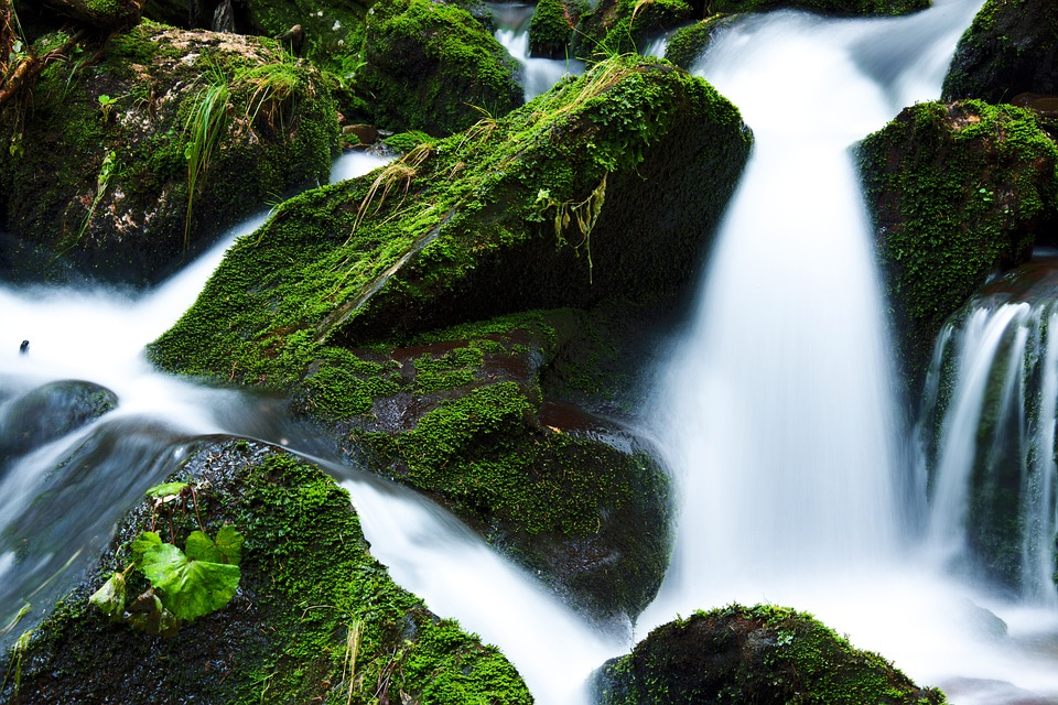 Creek, Falls, Flow, Flowing, Green, Landscape, Moss