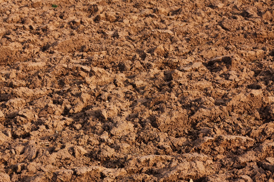 Abstrakt, Landwirtschaft, Hintergrund, Brown