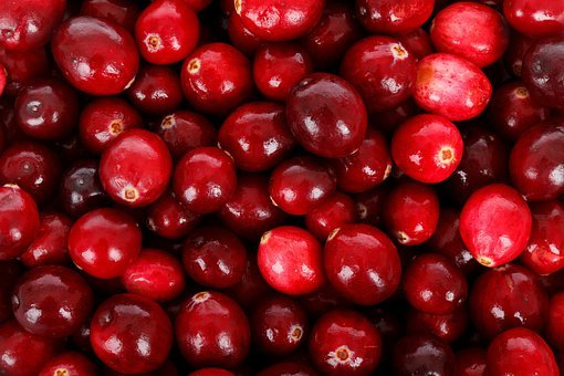 Backdrop, Background, Berry, Cranberry