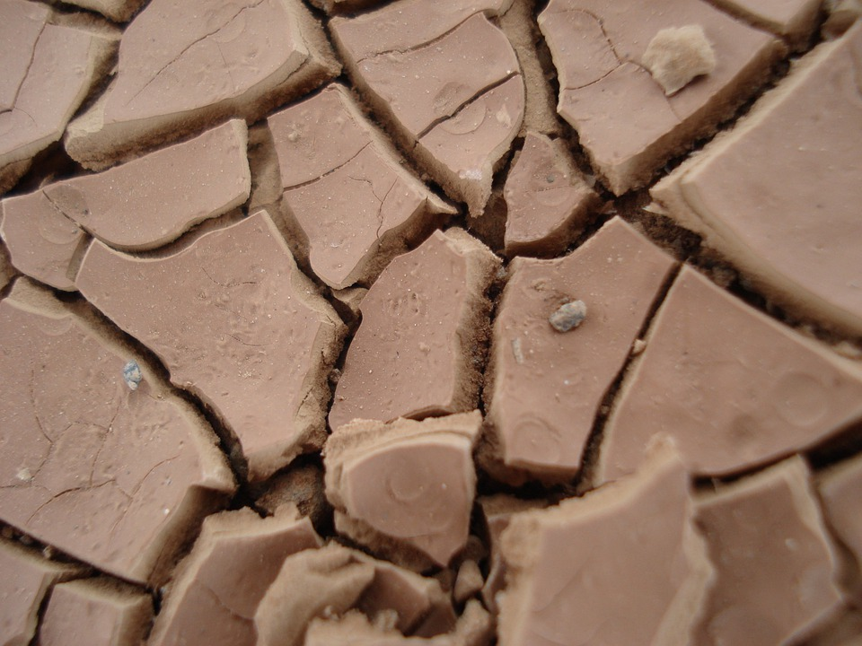 Effect of clay in soil on