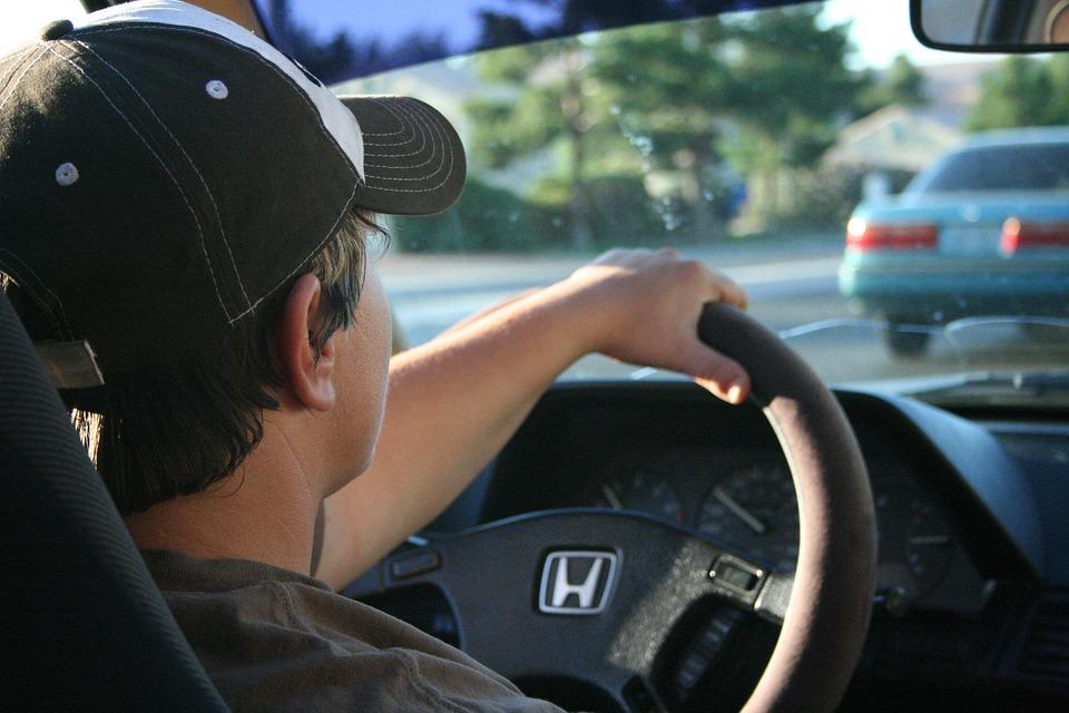 שלילה לנהג חדש