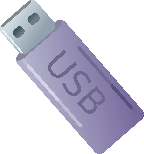 how to download a video from facebook onto usb stick