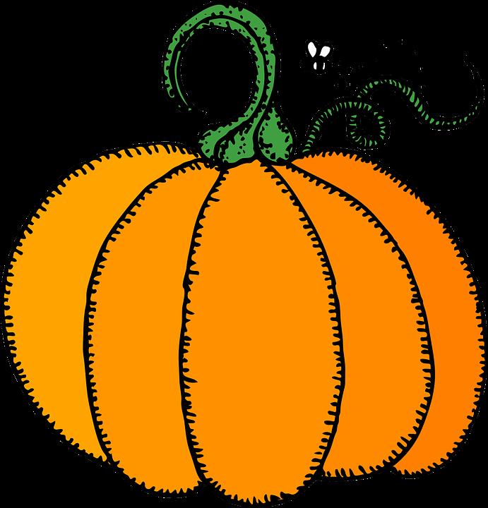 Kürbis Bilder Kostenlos kürbis speisekürbis früchte kostenlose vektorgrafik auf pixabay