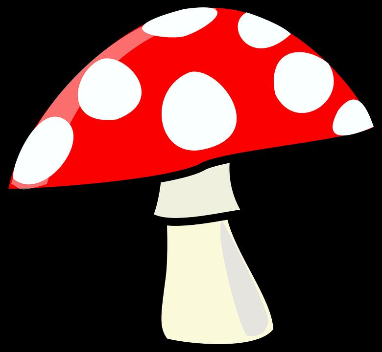 Výsledek obrázku pro houby kreslené
