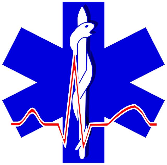 Sanitäter symbol  Kostenlose Vektorgrafik: Sanitäter, Logos, Symbole, Zeichen ...