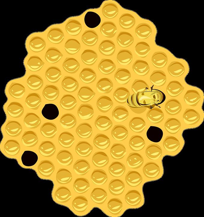 Panal Abeja Colmena · Gráficos vectoriales gratis en Pixabay